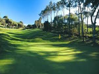 estoril sol - academia do golfe Golf Course in Cascais - Lisbon
