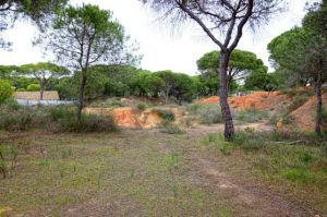 Land for sale in Quinta do Lago, Almancil, Vale do Lobo, Vilamoura, Quarteira - EMA12153